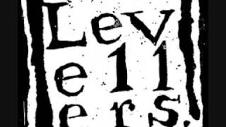Too Many Years - Levellers