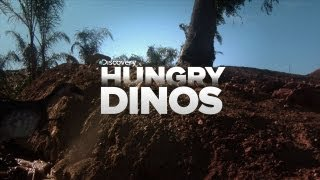 These Dinosaurs Are Hungry!