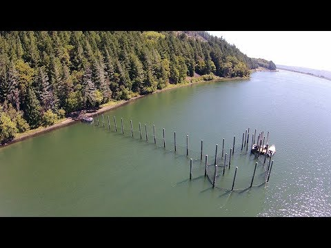The Fish Trap: A Sustainable Way Forward For Fish And Fishermen (2017)