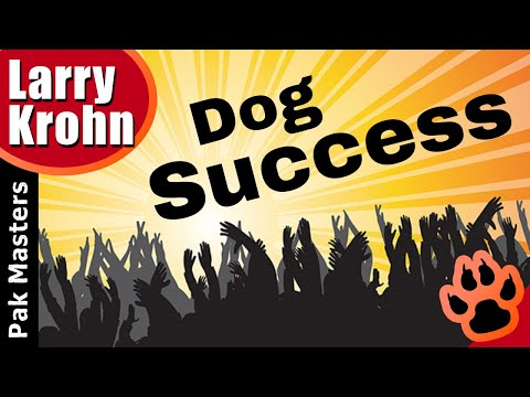 How to live with your dog for success
