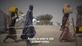 "Food crisis in Niger: ""We cannot let them be forgotten"""