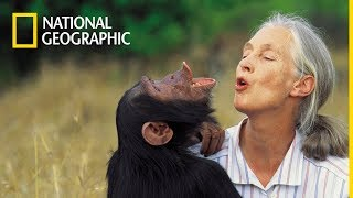 Maraton - Ikony National Geographic