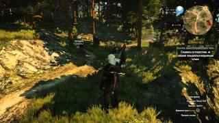 Ведьмак 3 - Глава 30 - Хозяйки Леса (полное прохождение БЕЗ КОММЕНТАРИЕВ)