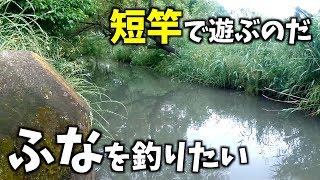 鮒を釣りたい !六尺で頑張る! thumbnail