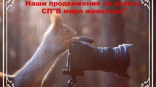 """СП""""В мире животных""""/Наши продвижения за апрель 2016г. Слайд-шоу!"""