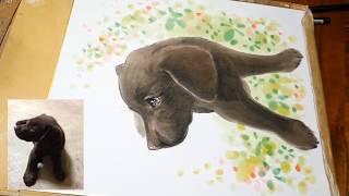 ラブラドールレトリバー生後3か月の赤ちゃん犬の似顔絵