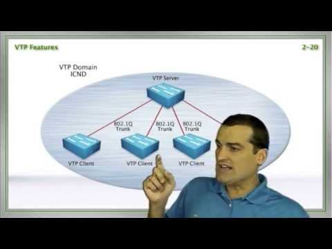 VLANs, and Trunks, and Switches, Oh My!