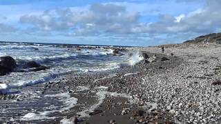 Beach on Gulf of St. Lawrence at Gros Morne National Park near Rocky Harbour Newfoundland, Canada