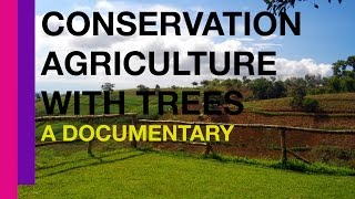 Conservation Agriculture with Trees in the Philippines: A Documentary