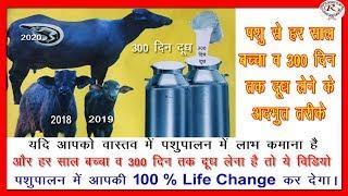 पशु से हर साल बच्चा व 300 दिन तक दूध लेने के अद्भुत तरीके, Every year baby, 300 days milk