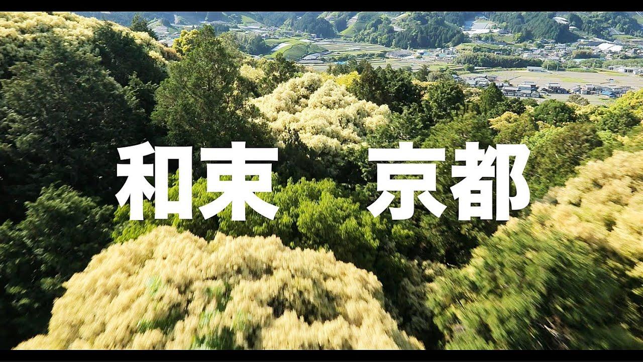 【空の旅#89】「栗の葉っぱが季節を教えてくれてるよ」空撮・多胡光純 和束_Kyoto aerial
