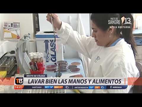 Preocupación por aumento de casos de cólera en Chile