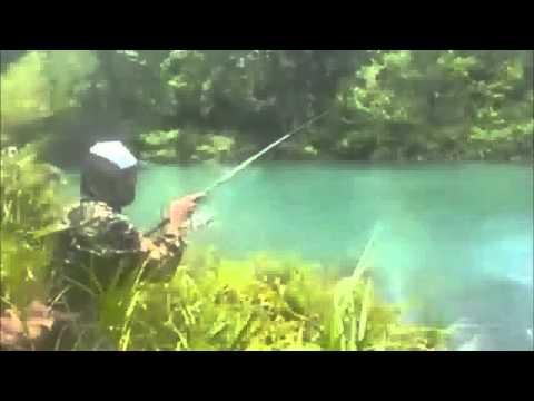 Casting Ikan Gabus Besar Di Danau Air Biru Kalimantan Timur   Mancing Mania
