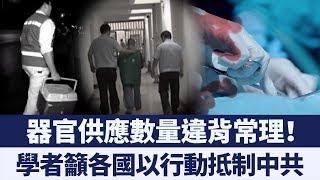中共還在殺人盜賣器官!學者呼籲各國積極抵制|新唐人亞太電視|20190710