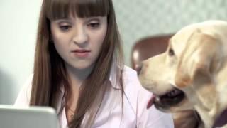 Джессика в рекламе Интернет магазина Мир корма(, 2016-03-28T09:39:17.000Z)