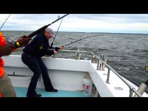 2017 Trophy Striped Bass Season Opener - Chesapeake Bay Rockfish Trip from Solomons MD - 4K