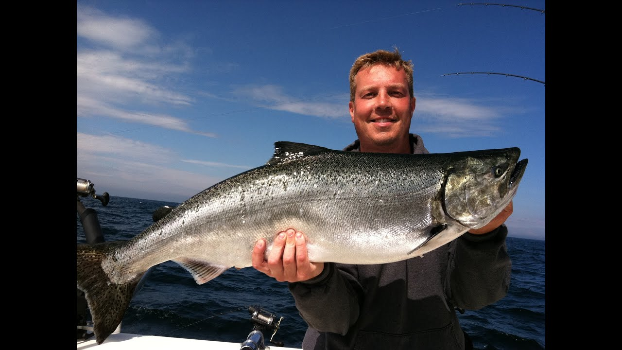 Salmon and steelhead fishing lake michigan charters algoma for Fishing in lake michigan