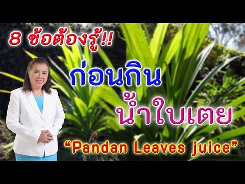 ห้ามพลาดเพื่อสุขภาพ 8ข้อต้องรู้ ก่อนกินน้ำใบเตย | Pandan leaves juice | พี่ปลา Healthy Fish