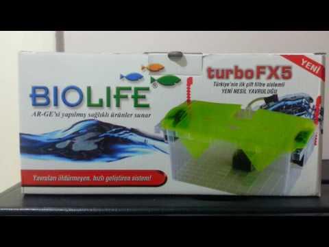 Hobihanem - Biolife Turbo FX5 Yavruluk İnceleme & Tanıtımı