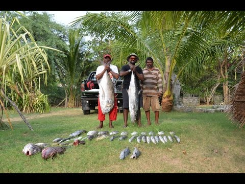 Fishing in Sri Lanka (Fishing fun in Kirinda with Shanaka &