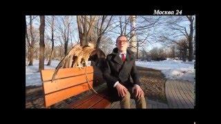 Сделано в Москве: Останкинская телебашня - история создания