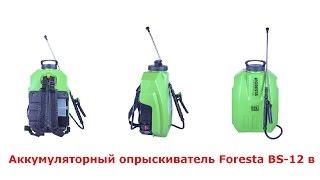 Садовый опрыскиватель. Аккумуляторный опрыскиватель Foresta BS-12 V.