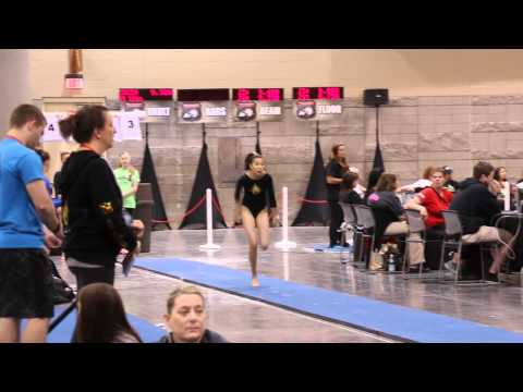 Madison Wong 3rd Vault 2015 Region 1 Wildfire Gymnast Level 8