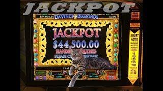 DaVinci Diamonds w BIG WIN BONUS  $200 a Spin!