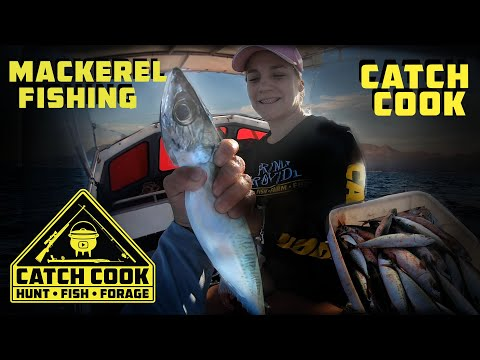Catching plenty of Mackerel for bait and dinner at False Bay, South Africa | CATCH COOK