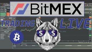 $BTC live Bitcoin trading on Bitmex. Road to 1BTC