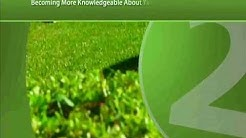 How To Find The Best Lawn Maintenance Company In Jacksonville Florida