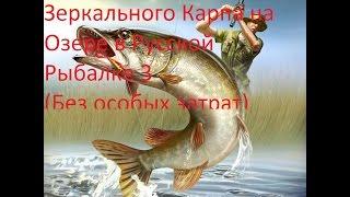Ловля (зачетного)Зеркального Карпа на Озере в Русской Рыбалке 3.