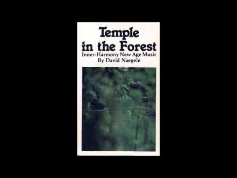 David Naegele - Temple in the Forest (Side A)