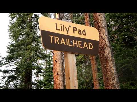 LILY PAD TRAIL - SILVERTHORNE, CO.
