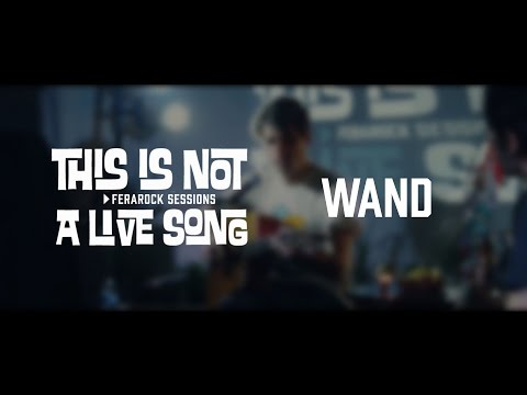 This is Not a Live Song Ferarock Sessions - WAND