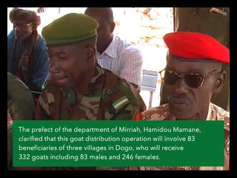 Goat distribution ceremony in Niger
