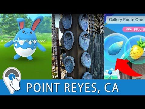 Destination Pokemon GO in Point Reyes, California!