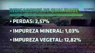 Gambar cover IDGEO parabeniza Cerradinho Bio por premiação e recorde mundial de corte de cana-de-açúcar