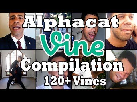 Best of Alphacat/Obama Compilation [120+ VINES!]