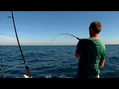 Offshore Fishing SW Florida | Non stop action!