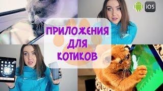 ★ Приложения для котиков ★ [ CAT APP ] ios , android