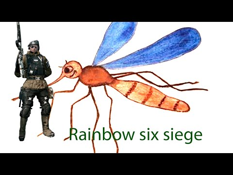 Rainbow six siege #2 Тактика - галактика или как hellkotik катку тащил...