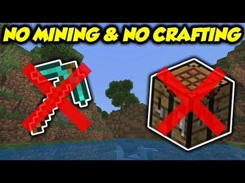 Tested: Can You Beat Minecraft Without Mining OR Crafting?