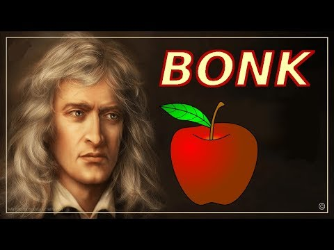 Did An Apple Really Fall On Newton's Head? Did Newton Really Discover Gravity?