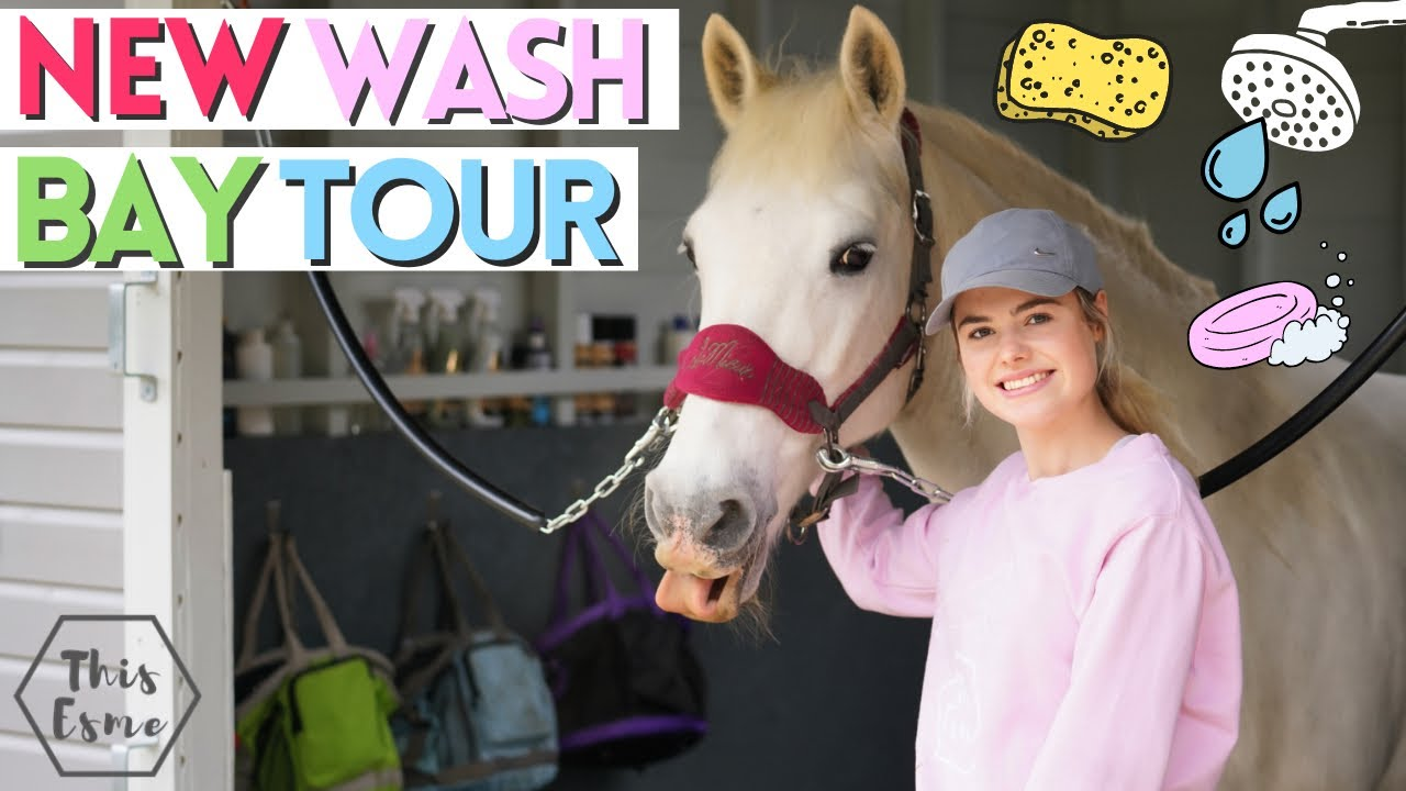 Download New Wash Bay Tour! Stable Renovation Series 2 AD | This Esme