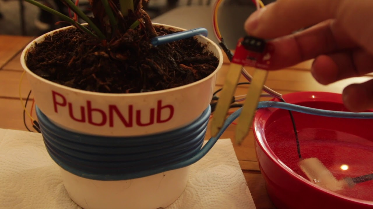 Build a Smart, Automated IoT Plant Irrigation System with
