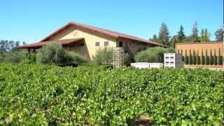 Luna Vineyards - Napa, California