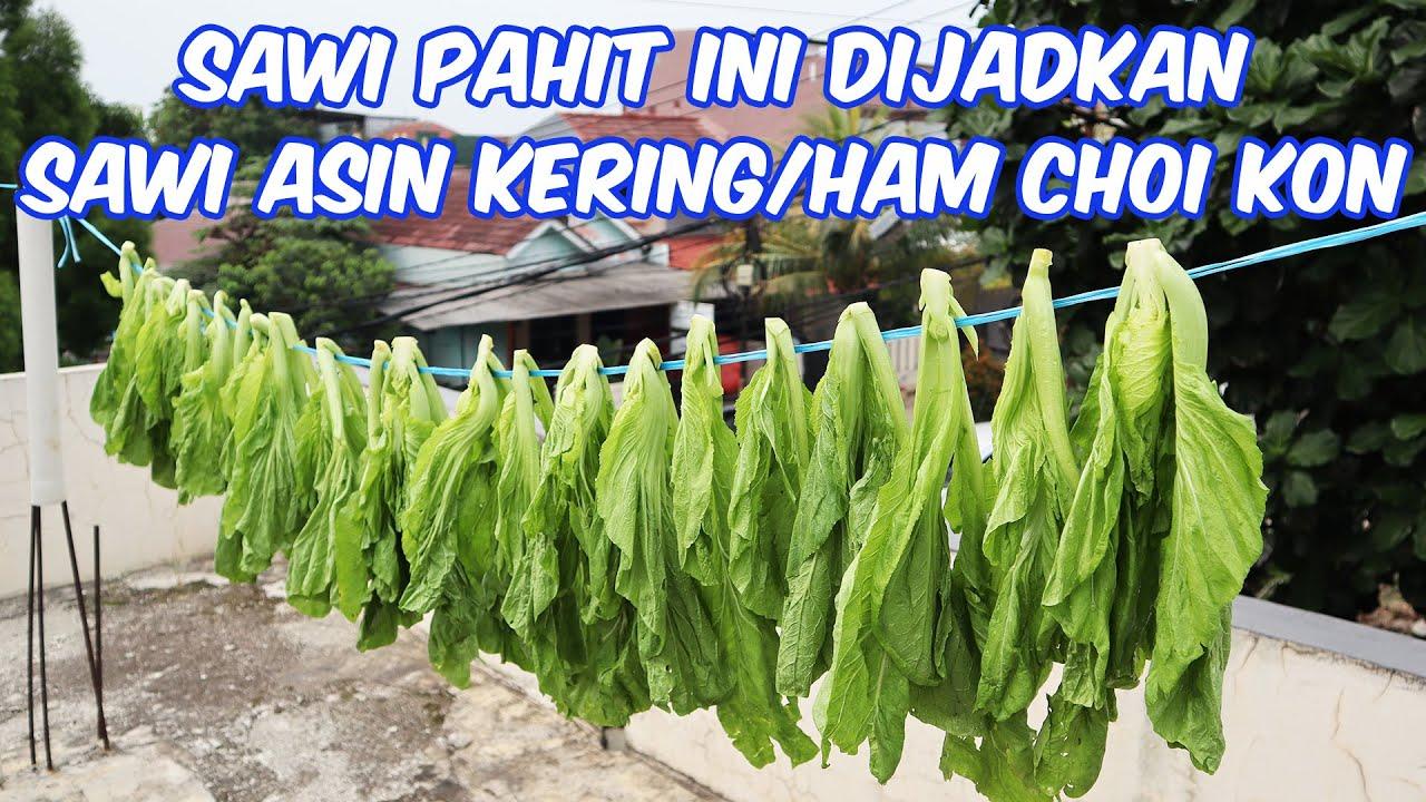 SAWI PAHIT INI DIJADIKAN SAWI ASIN KERING / HAM CHOI KON / MOI CHOI