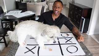 Playing Tic-Tac-Toe With My Dog   Alonzo Lerone