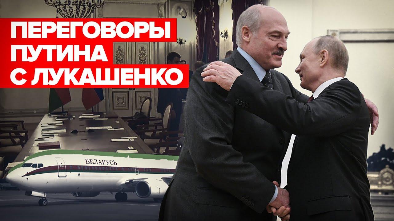 «Отношения развиваются успешно»: Путин проводит переговоры с Лукашенко